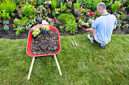 Gardening Tips with a Senior Loved One