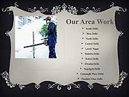 Choosing your Reliable Pest Control Service in Del