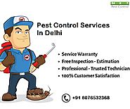 Get The Affordable Termite Control Service In Delhi