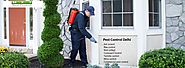 Best Pest Control Services In delhi