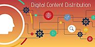 Digital Content Distribution: Get Answers To All Your Queries :: oneread