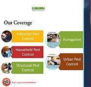 Looking the Reliable Pest Control Services in Delhi