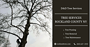 ISA Certified Tree Care | Tree Trimming Rockland NY | Tree Removal Rockland | Tree Maintenance Rockland County NY