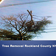 Tree Removal Rockland County NY