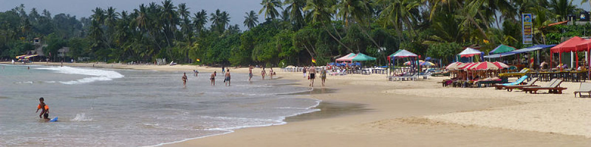 Headline for Top Attractions in Mirissa - A memorable holiday in Sri Lanka