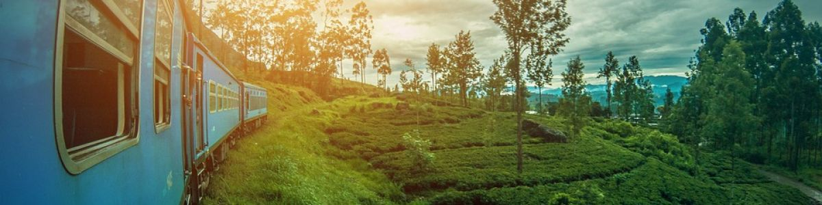 Headline for Activities to do in Nuwara Eliya Sri Lanka – Chilly Hill Country Getaway
