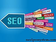 NeelPro System provides complete Digital Marketing and SEO Services