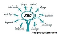 NeelPro System provides best and effective Digital Marketing and SEO Services
