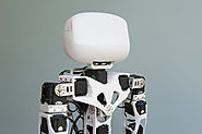 Global Humanoid Robots Market (2018-2025)-GMI Research