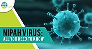 Nipah Virus(NiV): All you need to know!! – WeMaLife – Medium