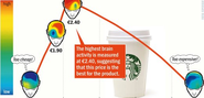 Is Your Coffee too Cheap? Using Brainwaves to Test Prices - SPIEGEL ONLINE
