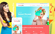 Cleaning & Maid Service Company WordPress Theme Business & Services Maintenance Services Cleaning Template