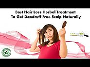 Best Hair Loss Herbal Treatment to Get Dandruff Free Scalp Naturally