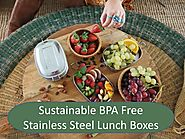 Sustainable BPA Free Stainless Steel Lunch Boxes PowerPoint Presentation - ID:7836569
