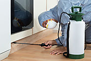 Call the Pest Control South Delhi for an efficient solution – pest control south delhi