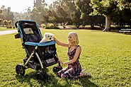 Care for Your Dog Using Dog Strollers for Large Dogs – Pet Rover
