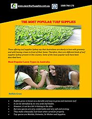 The Most Popular Turf Supplies Sydney