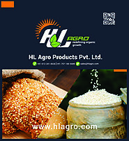 Indian sesame seeds - Processors, Exporters & Suppliers