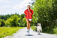 8 Safety Tips For Working Out With Your Dog -Ejournalz