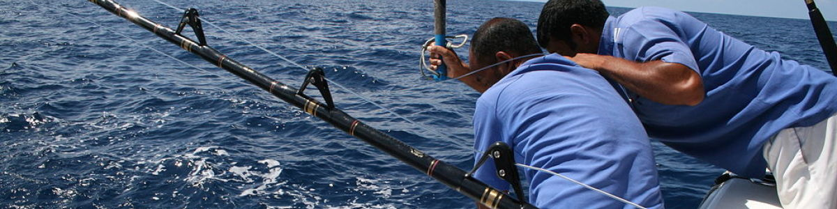 Headline for Types of Fishing in the Maldives – Game Fishing In the Island Paradise