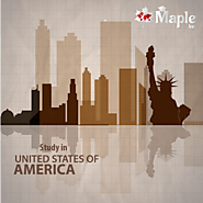 Study in USA - Maple Inc