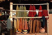Making Natural Dyes from Plants | Pioneer Thinking