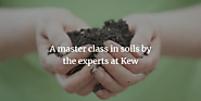 A masterclass in soil from the experts at Kew | James Wong | Life and style | The Guardian