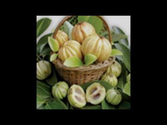 Advanced Pure Garcinia
