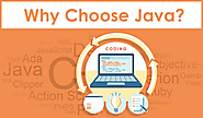 Website at http://www.apsense.com/article/reasons-to-choose-java-for-developing-web-applications.html