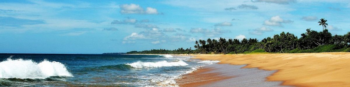 Headline for 5 Best Places to Explore in Sri Lanka - Mountains, Cave Temples, Beaches and More!
