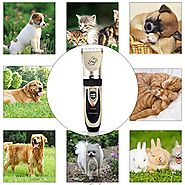 Top 10 Best Professional Dog Grooming Kits Reviews on Flipboard