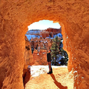 Looking Through - Bryce Canyon #bryce #nationalpark