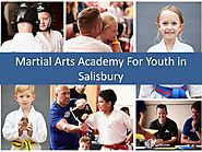 PPT - Martial Arts Academy For Youth in Salisbury PowerPoint Presentation - ID:8115036