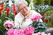 Effective Forms of Stress Relief for Senior Citizens