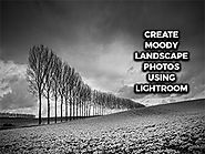 Create Moody Landscape Photos Using Lightroom - Animation Courses