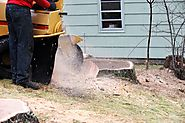 Why You Should Use Stump Grinding & Removal Service for That Obstructive Tree Stump – Ask Way