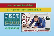 Offering Most Viable Pest Control Services in Faridabad
