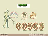 Looking the Reliable Pest Control Services in Faridabad