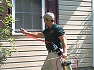 Why do you need pest control in your neighborhood? – pest control service