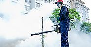 Why Choose Best Pest Control Provider