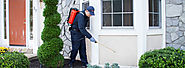 Protect your Family – Pest Control Delhi