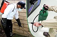 TOP PEST CONTROL SERVICES IN DWARKA
