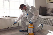 Pest Control Tips For This Winter – Best Pest Control Experts in Dwarka