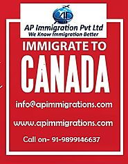 Website at https://www.apimmigrations.com/contact/online-visa-assessment.html