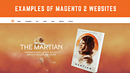 Top 30 Examples of Well-Designed Magento 2 Development Websites