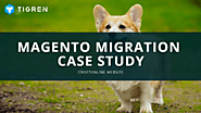 Magento 2 Migration Case Study - Real Example Of Magento Migration