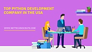 Top Python Web Development Company | Hire Python Developer