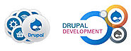Find Drupal Development Companies For More Powerful Websites