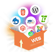 DHARIZ: Web Development Company in Chennai | Website Development Services