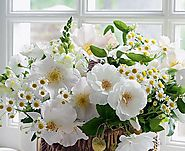 Luxury Flowers with Characteristic Magnificence